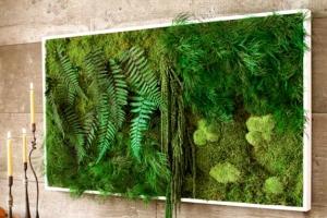 home-fern-moss-art-m