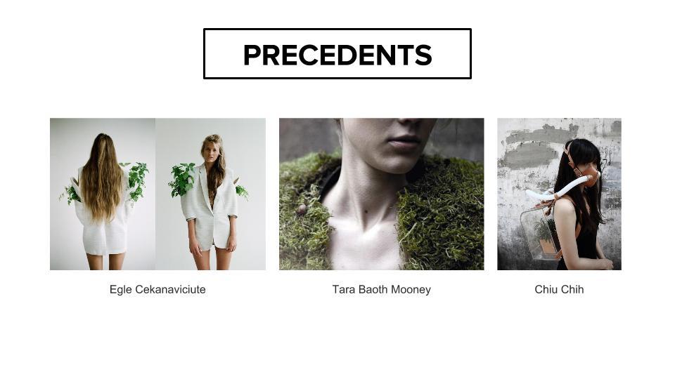 Mid-presentation-3