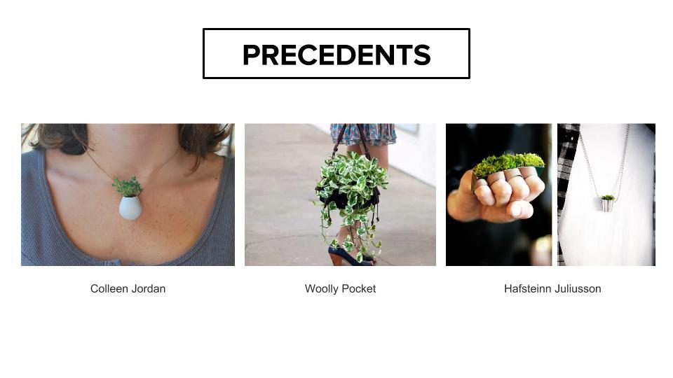 Mid-presentation-4