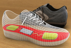 shoes-charger-300x201